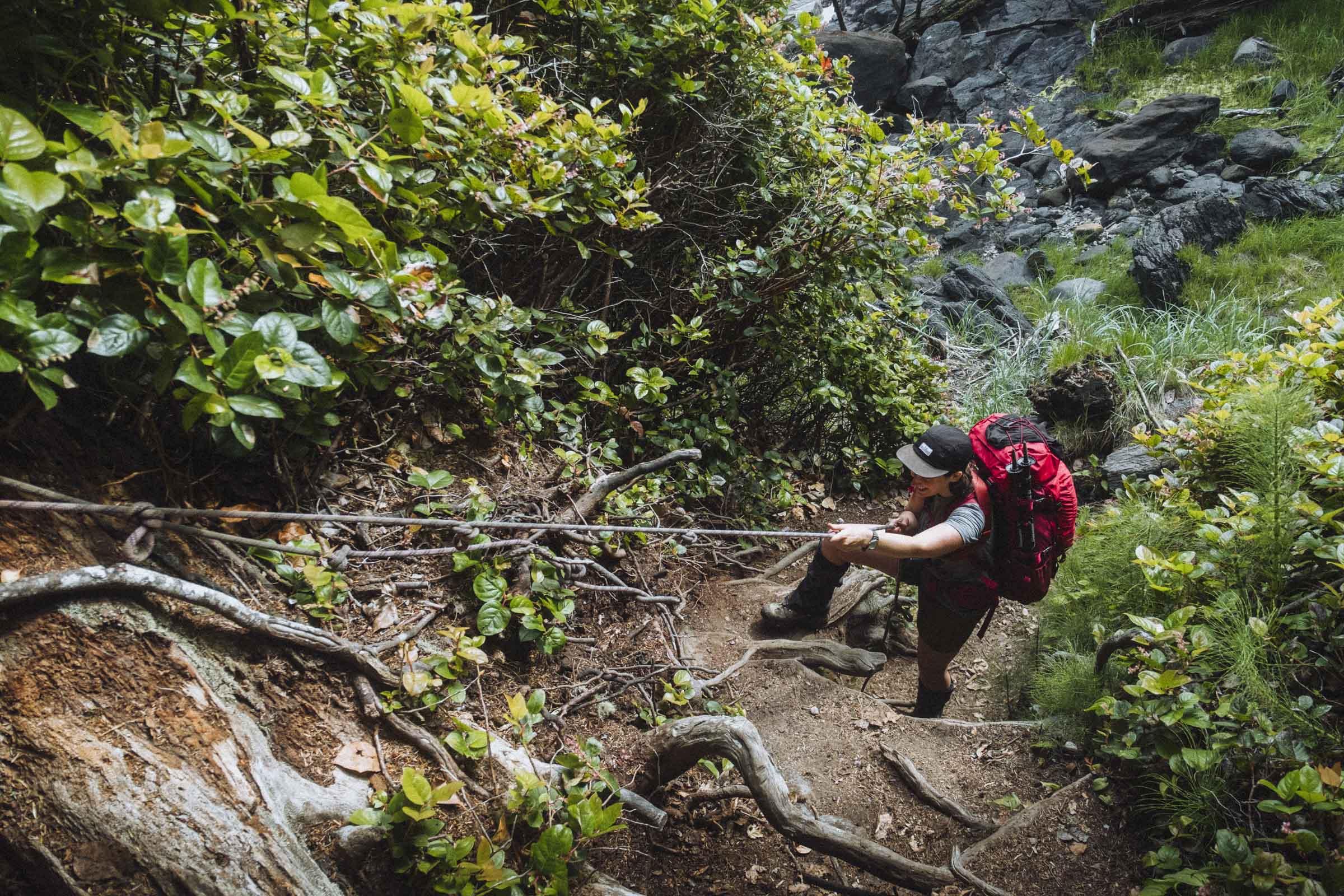 The Juan de Fuca Trail